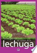 libro Manual Práctico Del Cultivo De La Lechuga