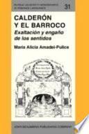 libro Calderón Y El Barroco