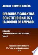 libro Derechos Y Garantías Constitucionales Y La Acción De Amparo. Tomo X. Colección Tratado De Derecho Constitucional