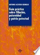 libro Guía Práctica Sobre Filiación, Paternidad Y Patria Potestad