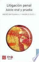 libro Litigación Penal