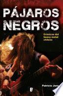 libro Pájaros Negros, El Heavy Metal Chileno