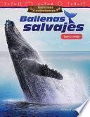 libro Animales Asombrosos: Ballenas Salvajes: Suma Y Resta (amazing Animals: Wild Whales: Addition And Subtraction)
