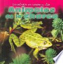 libro Animales De La Charca