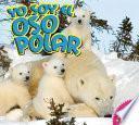 libro Yo Soy El Oso Polar / I Am A Polar Bear
