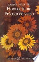 libro Hora De Junio ; Y, Práctica De Vuelo