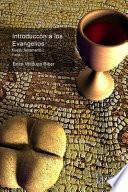 libro Introducción A Los Evangelios