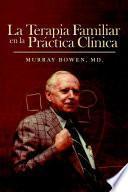 libro La Terapia Familiar En La Practica Clinica