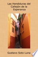 libro Las Hendiduras Del Callejón De La Esperanza