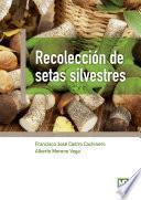 libro Recolección De Setas Silvestres